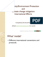 Biodivesity Conservation and Climate Change Mitigation International Efforts