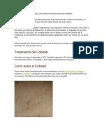 tratamiento de cobweb.docx