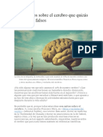 Nueve Mitos Sobre El Cerebro