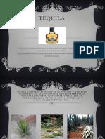 TEQUILA.pptx