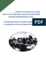 1 concreción-campos.pdf