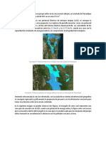 SGFT Proyecto.pdf