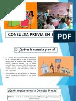 Consulta Previa en El Perú