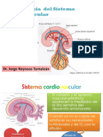 Cardio Embrio Clase