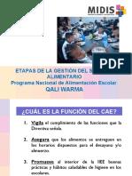 PPT ETAPAS DEL CAE
