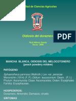 Clase Fito Agr Oidiosis Del Melocotonero