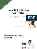 Tema 11. Sistemas sensoriales.pdf