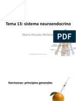 Tema 13. Sistema neuroendocrino.pdf