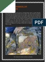 158021733-ZIDURILE-PIRAMIDELOR-DIN-ROMANIA.pdf