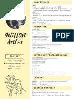 CV ARTHUR GUILLON - 2018