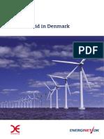 ENERGYNET 2010-Smart Grid in Denmark.pdf