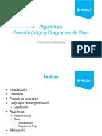 13- Algoritmos.pdf