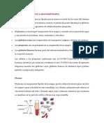 Sangre componentes y micronutrientes.docx