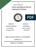 Ev Law Final