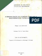 Centurione_Doutorado
