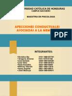 Afecciones Conductuales Asociadas a la Memoria (1)(2).pptx