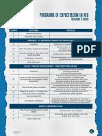 1. Programa Capacitación en red..pdf