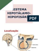 Hipotálamo e Hipófise 1