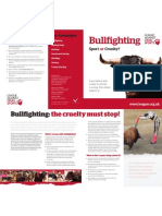 Bullfighting Leaflet
