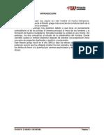 ENSAYO DE COMUNICACION.docx