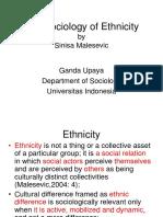 Sinisa Malasevic - The Sociology of Ethnicity
