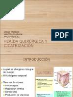 Cicatrizacion y Heridas Cirugia