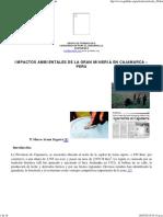 Artículo 28 - Impactos Ambientales de Minera Yanacocha