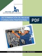 Determinación de Necesidades de Formación Profesional