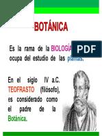 Clase 3_Reino Vegetal