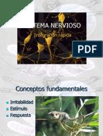 Sistema Nervioso 2018