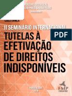 eBook Coletanea II Seminario Internacional Tutelas