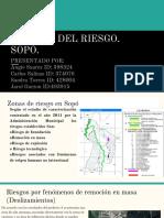 GESTION DEL RIESGO .pdf