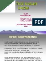 43757_ENZIM-13ggig