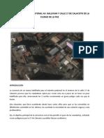Proyecto Pasarela Peatonal Av