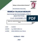 LABORATORIO FLUIDOS N° 0001