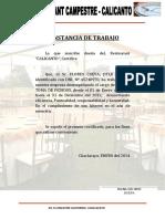CONSTANCIA DE TRABAJO calicNTO 2013.docx