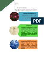 Bioquimica Clinica Tutorias