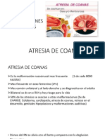 2DA CLASE Malformaciones y Patologias de La Nariz