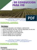 Presentacion  - Sistemas de Conducción-CURSO JOYA.pdf