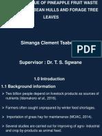 Final Report Presentation - Edit