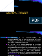 micronutrientes-set-2008-1221778202284086-9