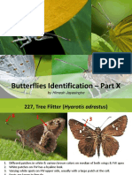 BCSSL Lec17 Butterfly Identification Part X