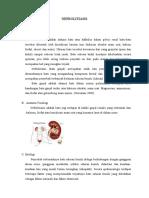 2 LP analisa kasus III BATU GINJAL.doc