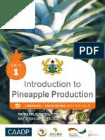 Intro to Pineapple Unit 1