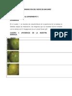 (370870009) Analisis Morfometrico y Rendimientos