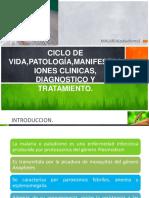 14malariadiagnosticoytratamiento-140203110125-phpapp02.pdf