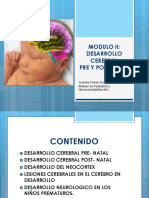 Modulo II Desarrollo Cerebral