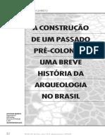 1.a Construção de Um Passado Pré-colonial - Uma Breve História Da Arqueologia No Brasil