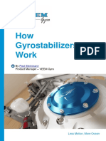 Whitepaper-1402-How_Gyrostabilizers_Work.pdf