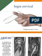 Citologia Cervical.ppt